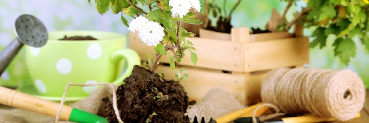 Comment transformer ma caisse en jardinière ?